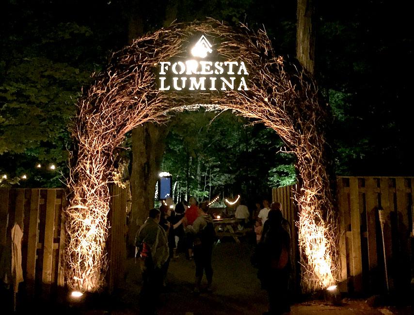 2015_09_09_Foresta_Lumina1